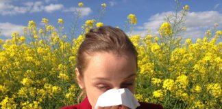 allergi-astma
